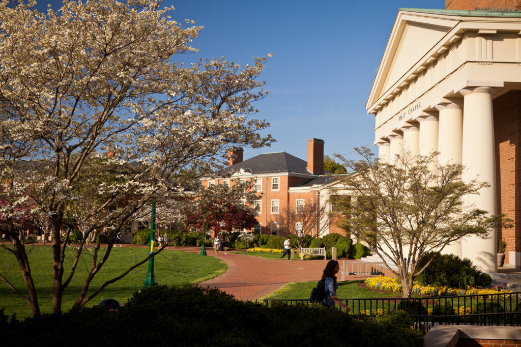 pic from wfu.edu